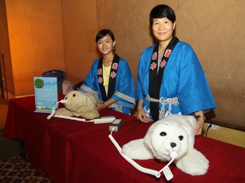 Hoi An-Japan cultural exchange promoted - Ảnh minh hoạ 2